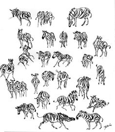 Zebras Everywhere by davidsdoodles.deviantart.com on @deviantART