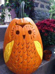 owl stencil for pumpkin carving | Crazy easy pumpkin carvings