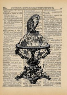 Navigating the Globe Black and White Owl Print on an by AvantPrint