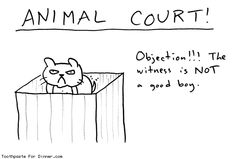 Objection! The witness is NOT a good boy. www.toothpastefordinner.com