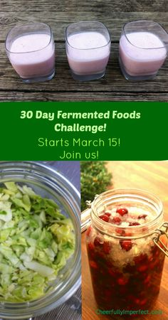 30 Day Fermented Foods Challenge! Open to everyone, starts March 15th! If you have always wanted to try fermenting, but not sure where to start, join us!