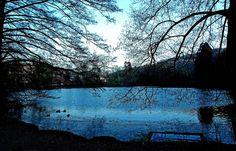 Die blaue Stunde, ... ist bei uns bei einer anhaltenden Hochnebelwetterlage natürlich eher grau in grau. Nicht so Ende letzter Woche im Mettlacher Abteipark.  :-)