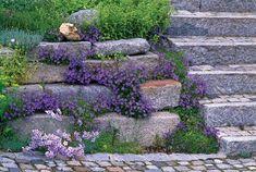 rock wall garden along steps Boulder Retaining Wall, Garden Retaining Wall, Retaining Walls, Outdoor Landscaping, Outdoor Gardens, Rock Wall Gardens, Garden Photos, Plant Wall, Dream Garden