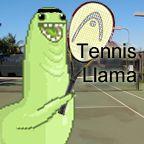 Tennis llama is ready for tennis!
