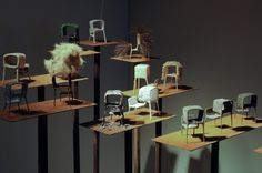 Nacho Carbonell, Diversity marquettes