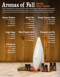 I have lots and lots of doTERRA recipes for food. You can use doTERRA essential oils in all kinds of food like appetizers, snacks, and dinners and desserts. Fall Essential Oils, Essential Oil Diffuser Blends, Essential Oil Uses, Doterra Diffuser, Doterra Oils, Doterra Products, Pure Essential, Diffuser Recipes, Aromatherapy Oils