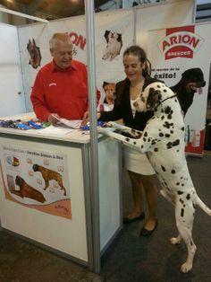 @Arion_ES #Exposición #Internacional #Canina #Martorell. Unai se interesa por el mejor plan de alimentación para él.