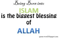 Read Online Quran Translation In English http://quranword.blogspot.com/