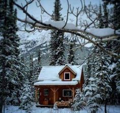 Tiny Cabins, Tiny House Cabin, Lake Cabins, Log Cabin Homes, Cabins And Cottages, Winter Cabin, Cozy Cabin, Cozy Cottage, Cottage Homes