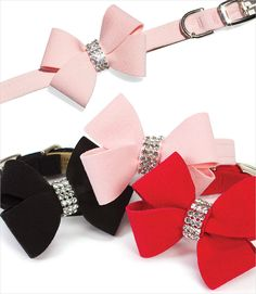 Nouveau Bow Dog Collars Sophia had to have the matching hair bow!!