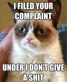 Grumpy Cat | I filed your complaint under I don't give a shit!