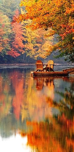 Beautiful fall colors by the lake All Nature, Beauty Of Nature, Images Of Nature, Autumn Nature, Nature Pics, Jolie Photo, Pretty Pictures, Beautiful Nature Pictures, Amazing Pictures