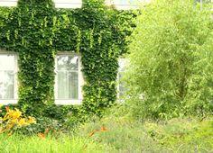 Environmental Awareness : Eco-friendly Hotel Stadthalle Vienna