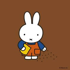 Then Daddy hands to Miffy  a bag of carrot seed.  He shows her how to sow it very carefully indeed.