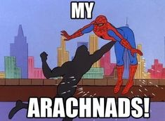 20 Hilarious 60s Spiderman Memes | SMOSH