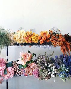 I like my flowers in rainbow order - Site Title