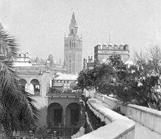 La gran nevada de Sevilla del 2 de febrero de 1954