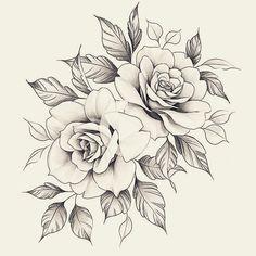 asfasffhdgkgjkugkukuk - 0 results for rose drawing