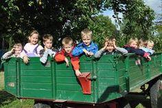 Apfelernte mit Traktor und Wagen