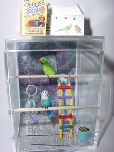 Custom Made To Order OOAK Dollhouse Miniature Pet Bird/Parrot Enclosure And 2 Birds GREAT GIFT