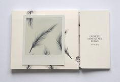 graphicporn:    Music CD cover design forLonely Mountain Bows  Alternative folk group from France, Portugal and Argentina.  Packaging realized combining feather illustrations, a very simple typography and different paper textures (smoothsatineépaper, Polaroid, and cardboard).  By Carla Cascales, Barcelona.