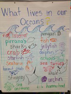 Simple Fish Anatomy Diagram Ocean Unit Study Pinterest