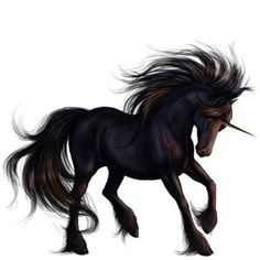 Unicorn Friesian Black