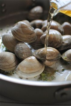 my boy would love theseBeer steamed clams.my boy would love theseClams Beer steamed clams.my boy would love theseBeer steamed clams.my boy would love these Clam Recipes, Beer Recipes, Seafood Recipes, Great Recipes, Cooking Recipes, Asian Recipes, Fish Dishes, Seafood Dishes, Fish And Seafood