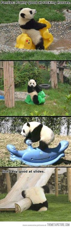 Pandas: Pretty good at rocking horses but.... Awww!