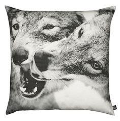 playing wolfs pillow
