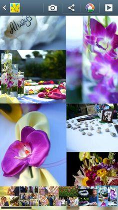 Hawaiian Wedding Colors