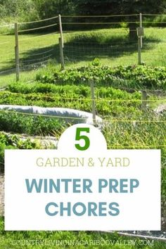 End of Season Wrap Up - Country Living in a Cariboo Valley Gardening For Beginners, Gardening Tips, Gardening Quotes, Flower Gardening, Garden Fencing, Garden Tools, Easy Vegetables To Grow, Weather And Climate, Rainwater Harvesting