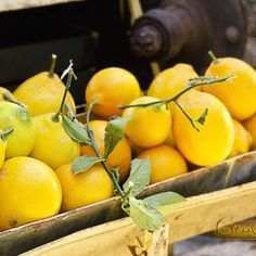 Store washed organic lemons or limes in the freezer. Once frozen, grate the whole unpeeled lemon & sprinkle it on top of your foods. Use on salads, soups, rice, fish, baked goods, etc... Lemon peels contain as much as 5-10 times more vitamins than the lemon juice itself!