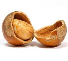 5 1 proprietà curative delle nocciole