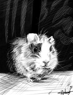 Sznitens- guinea pig by ~MsAsharah on deviantART