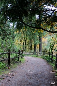 The trailhead leading to the Witch's Castle
