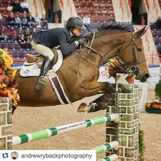 #Repost @andrewrybackphotography .  Up close and personal here at the Pennsylvania National Horse Show! Are you jealous? Or rather Zealous (Laura Chapot's mount). #andrewrybackphotography #horseshowphotography #horsesofinstagram #horse #jumpers #grand prix #PaNHS #pennsylvanianationalhorseshow