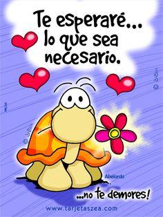 tortuga Abelardo con flor en los labios © ZEA www.tarjetaszea.com