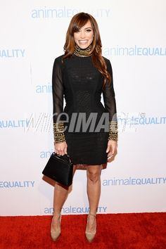Picture of Singer Jessica Sutta attends the Animal Equality Global Action annual gala at The Beverly Hilton Hotel on December 2 2017 in Beverly Hills California. Jessica Sutta, Cocktail Attire, The Beverly, Celebrity Pictures, Equality, Peplum Dress, Action, Singer, Animal