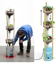 This is being called miniponics from Amsterdam. Could easily work for a kitchen herb garden. Download this PDF on how to build one for yourself: http://www.mediamatic.net/viewattachment/356425