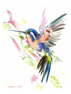 Painting Watercolor Birds Art Illustrations 36 Ideas For 2019 Watercolor Bird, Watercolor Animals, Watercolor Paintings, Watercolor Hummingbird, Watercolor Tattoo, Paintings Of Birds, Hummingbird Illustration, Watercolor Ideas, Art Paintings