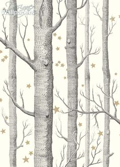 Cole and Son Woods & Pears wallpaper in Black, White & Gold from The Contemporary Restyled collection Star Wallpaper, Wood Wallpaper, White Wallpaper, Wallpaper Online, Pattern Wallpaper, Luxury Wallpaper, Custom Wallpaper, Hall Wallpaper, Birch Tree Wallpaper