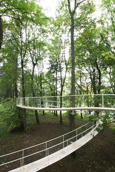 Built by Transsolar & Tetsuo Kondo Architects in Tallinn, Estonia In the elegant woods of Kadriorg, we added a path. A path which relies on the forest as it flutters through the woods...