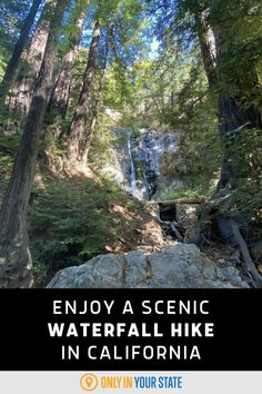 Enjoy a scenic, short, and shaded hike to a beautiful waterfall in Northern California. It's a great trail for beginners and families. Big Sur State Park, State Parks, Forest Scenery, Famous Beaches, Waterfall Hikes, Redwood Forest, Pedestrian Bridge, Valley View, Beautiful Waterfalls