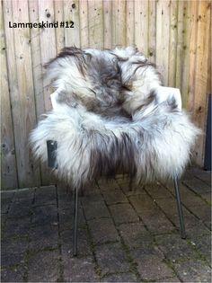 Helt exceptionel kvalitet og enestående skind. #12 Vil du sikre dig dette smukke lammeskind ? Så er det efter først til mølle princippet. http://covermepure.com/lammeskind/380-grat-langharet-skind-lammeskind-gra.html #theorganicsheep #coolnordiclook #backtonature #icelandicsheepskin #theorganicsheep #oneofakind #covermepurewebshop #ilove #jatak