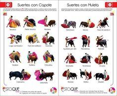 #toros? Diferentes pases y suertes.