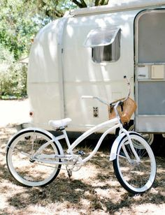 Just a Girl and her Little Dog: AIRSTREAM.love.
