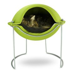 A Stylish, Modern Cat Pod Bed that not only Looks Great in your Home but will be LOVED by your Cat too! Designed for Great Looks and Feline Functionality. Crazy Cat Lady, Crazy Cats, Pod Bed, Green Bedding, Cat Condo, Pet Furniture, Furniture Design, Animal Projects, Cool Cats