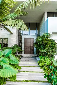 tropical garden 15 Splendid Tropical Entrance Designs That Will Take Your Breath Away Tropical Garden Design, Tropical Landscaping, Landscaping With Rocks, Tropical Houses, Garden Landscaping, Landscaping Design, Modern Tropical, Tropical Gardens, Tropical Vibes