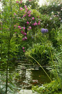 Naturgarten Planen Anlegen Und Gestalten Garten Ideen Garden